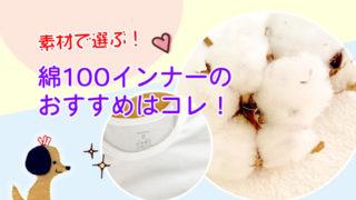 素材で選ぶ綿100インナーおすすめ
