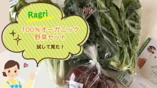 楽天Ragri100%オーガニック野菜セットを試してみた!