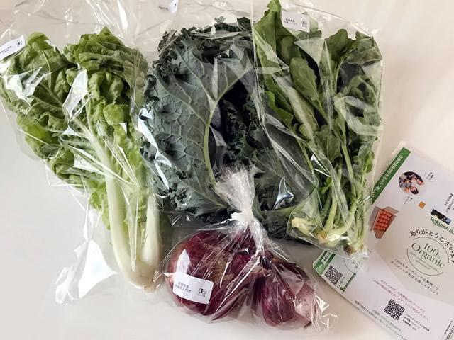 100%オーガニック野菜セット【Sサイズ】