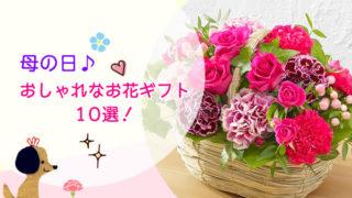 母の日に贈りたい!おしゃれなお花ギフト10選!
