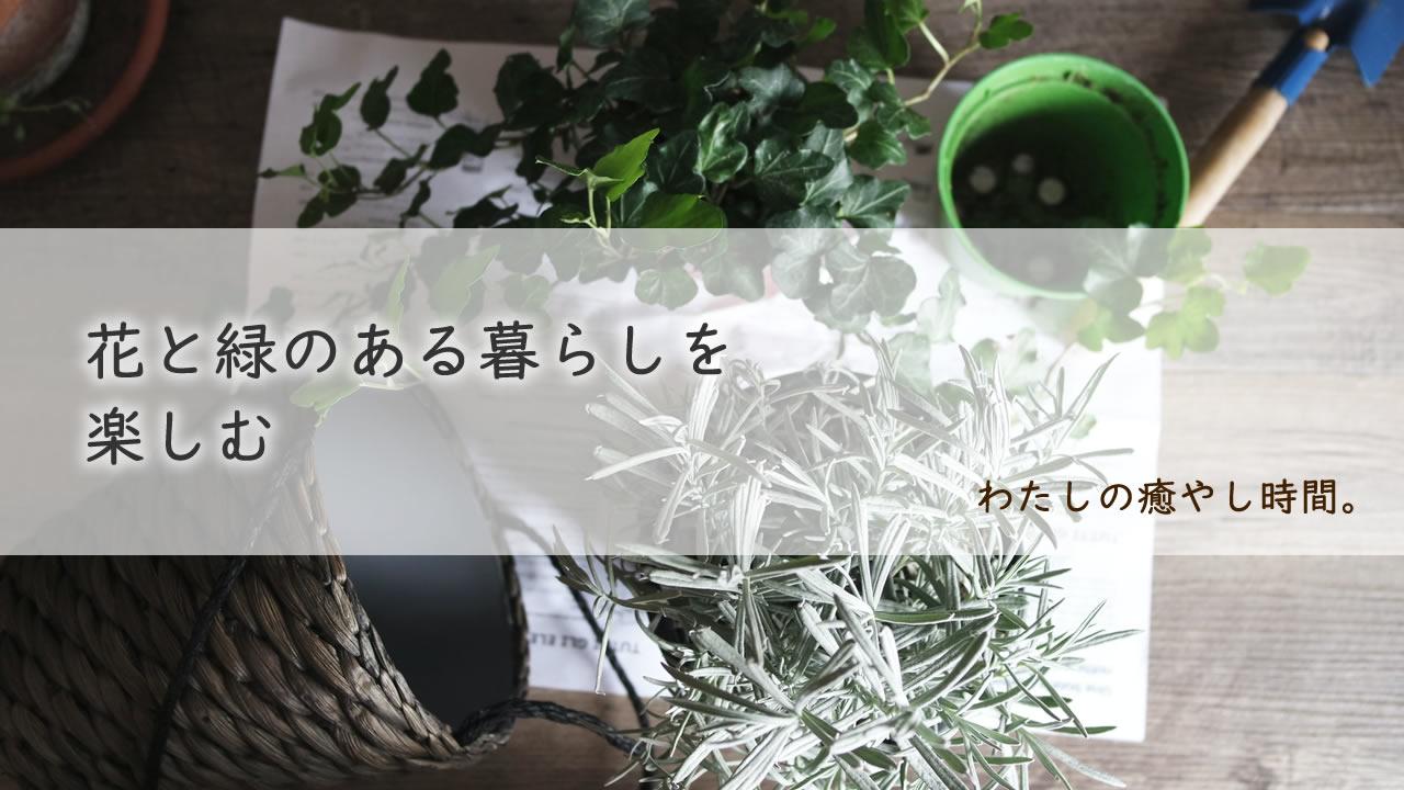 花と緑のある暮らしを楽しむ